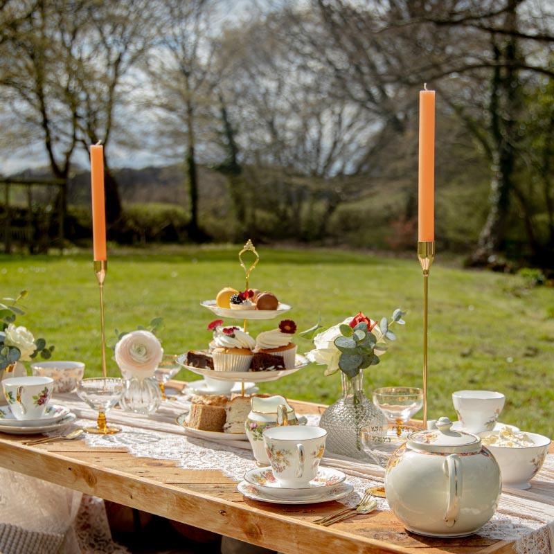 The Orange Blossom Tea picnic - image
